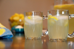 Fresh Lemonade 2