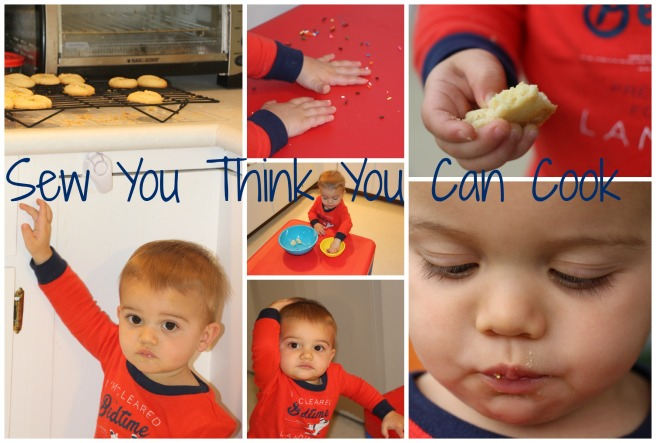 mantecaditos (baby) | sew you think you can cook