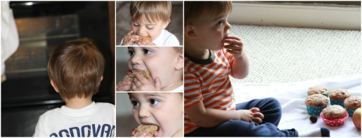 Apple Blackberry Muffins (toddler)  Sew You Think You Can Cook