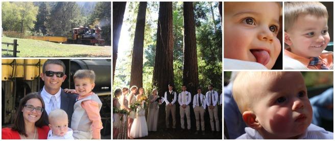 felton-wedding
