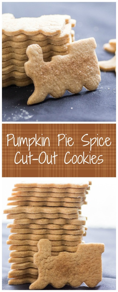 Pumpkin Pie Spice Cut-Out Cookies | Sew You Think You Can Cook | http://sewyouthinkyoucancook.com