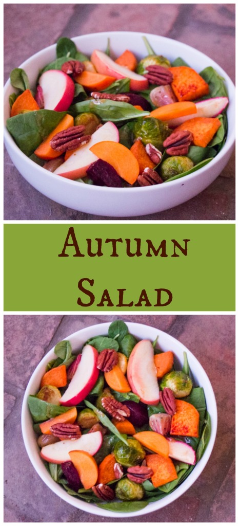 Autumn Salad | Sew You Think You Can Cook | http://sewyouthinkyoucancook.com