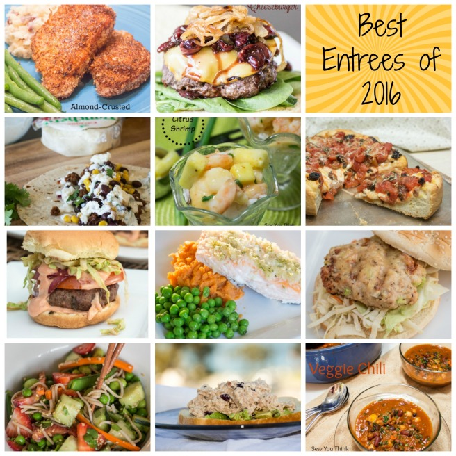 Best Entrees of 2016 | Sew You Think You Can Cook
