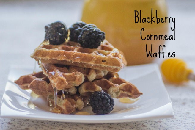 Blackberry Cornmeal Waffles   Sew You Think You Can Cook   http://sewyouthinkyoucancook.com (1)