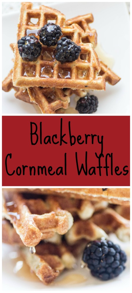 Blackberry Cornmeal Waffles | Sew You Think You Can Cook | http://sewyouthinkyoucancook.com