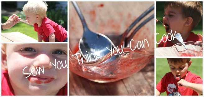 Strawberry Honey Sorbet (kids) | Sew You Think You Can Cook