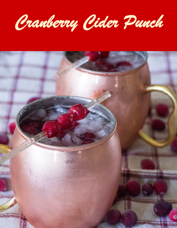 Cranberry Cider Punch for #CranberryWeek from Sew You Think You Can Cook (3)